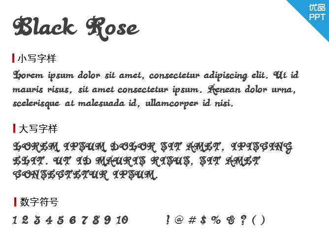 Black Rose字体