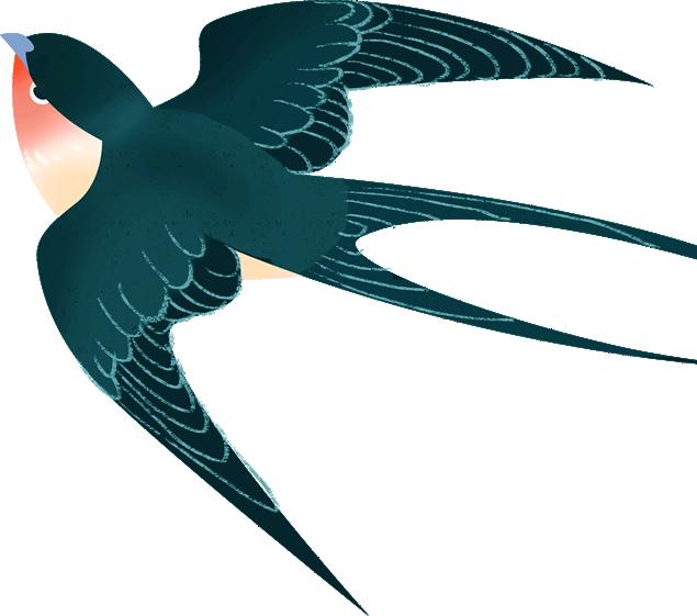 背景透明燕子图片素材打包下载(6张)